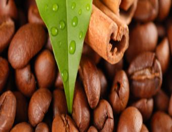 Почему выгодно приобретать кофе в интернете